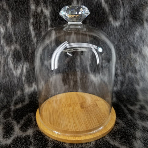 Glass Dome, Wood Base