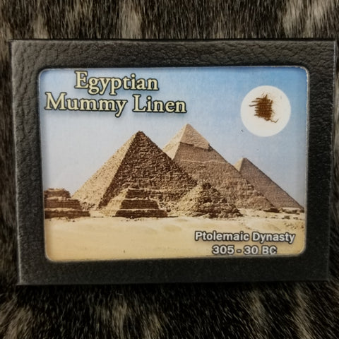 Ancient Egyptian Mummy Linen, Framed