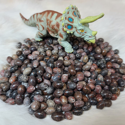 Dinosaur Bone Beads (SET OF 3)