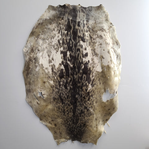 Ring Seal Skin, B (CRAFT)