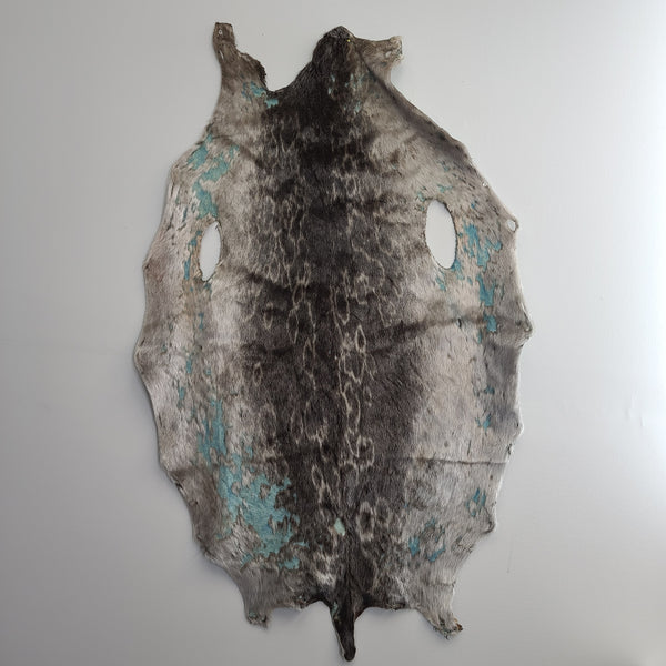 Ring Seal Skin, C (CRAFT)
