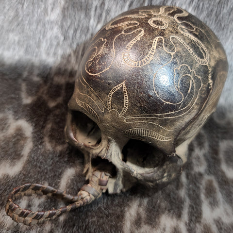 Dayak Tribal Skull, Roped