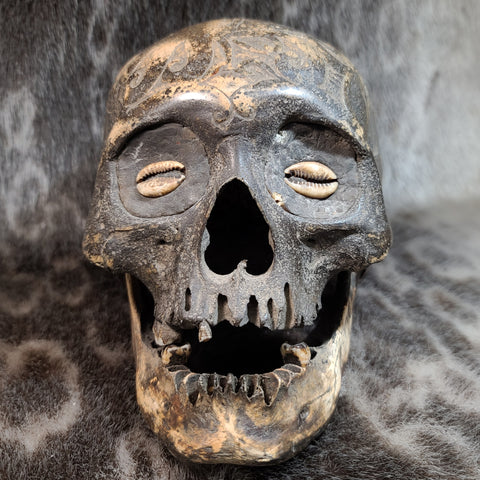 Dayak Tribal Skull, Shell Inlays