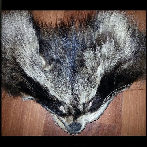 Raccoon Face Furs
