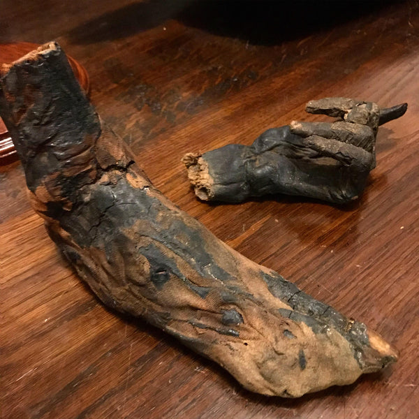 Ancient Egyptian Priest Mummy Hand & Foot