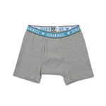 HMMD BOXER BRIEF