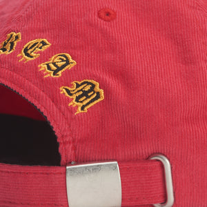 EYE SEE TIGER POLO HAT