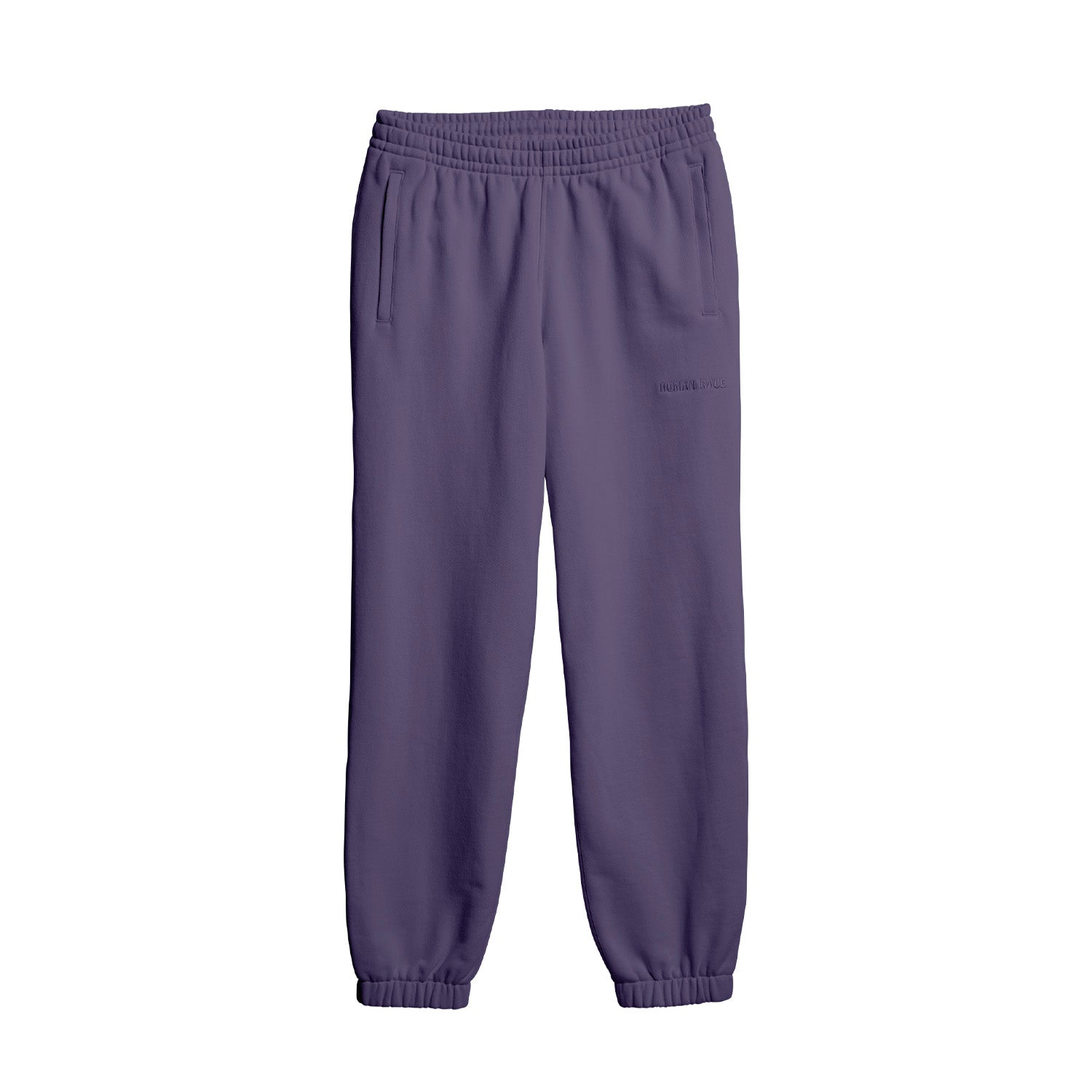 PW BASICS PANT TECH PURPLE