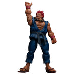 NO.05 AKUMA STREET FIGHTER