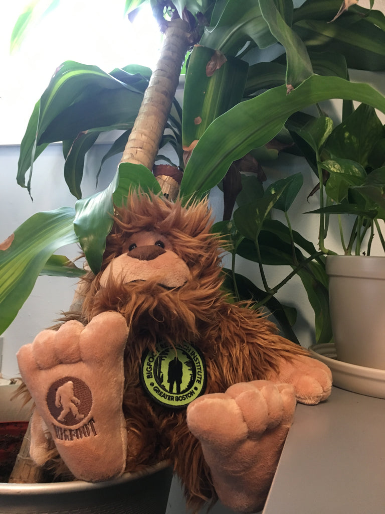 Plush Bigfoot