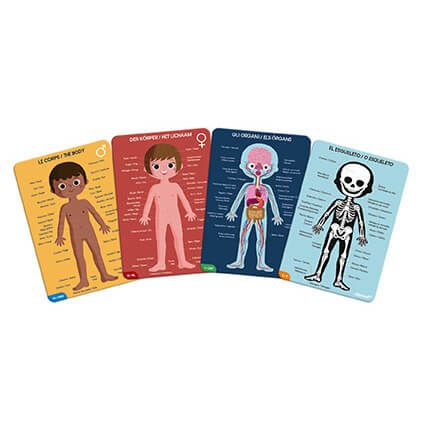 Educational Puzzle Human Body 4 in 1 By Janod - BloxxToys