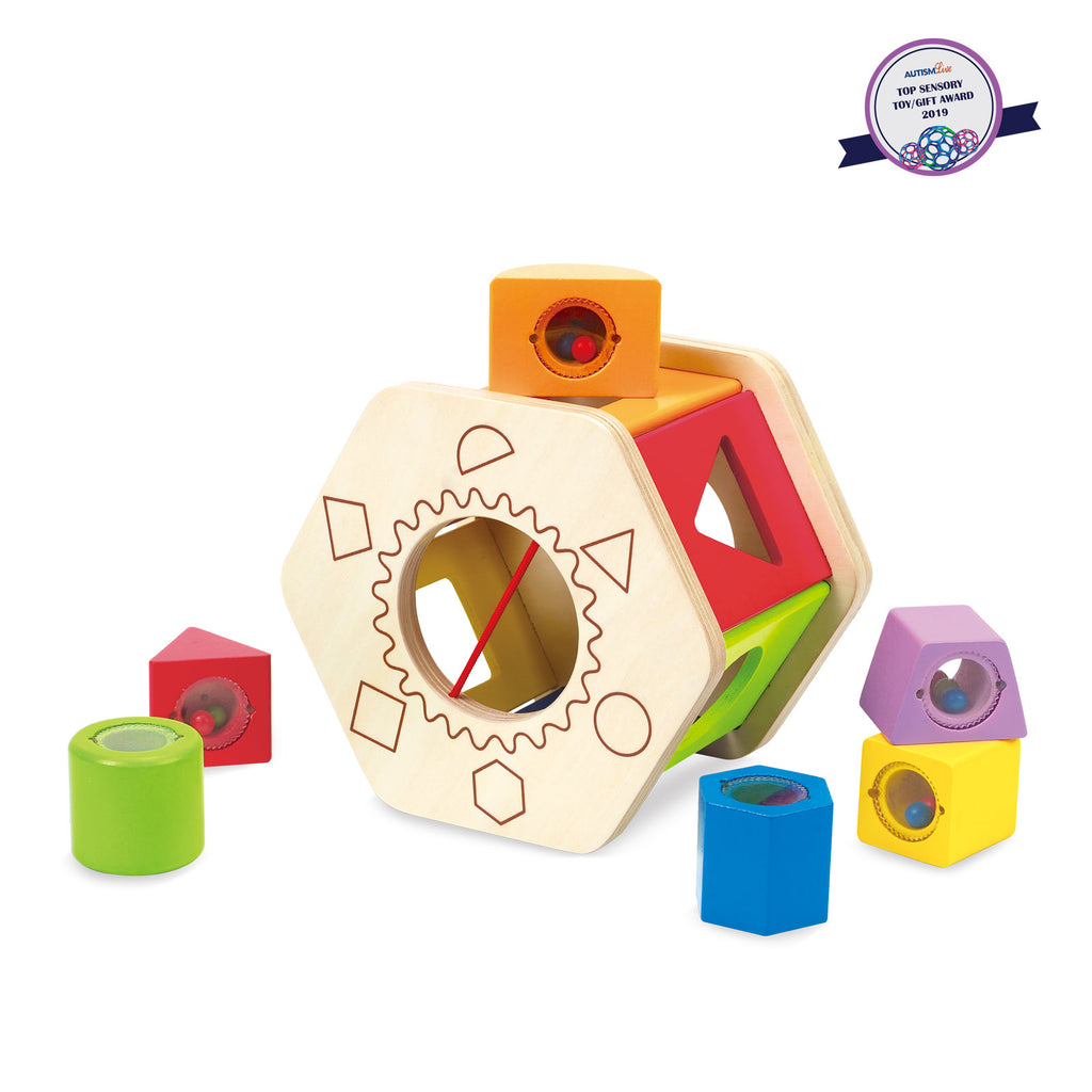 Shake and Match Shape Sorter By Hape I Educational Toys