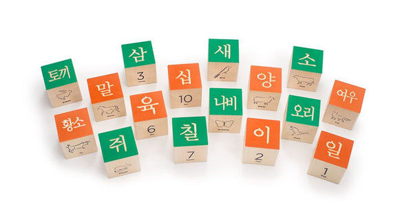 Uncle Goose Korean Language Blocks - Bloxx Toys - Toronto Online Toys Store - Canada