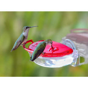 Aspects Gem Window Hummingbird Feeder