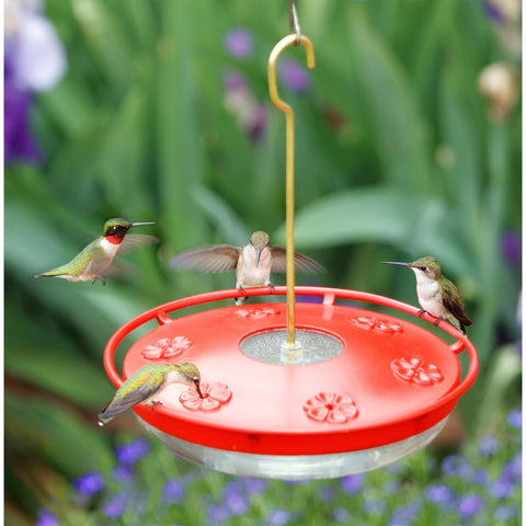 Aspects Hummzinger Excel High View Hummingbird Feeder