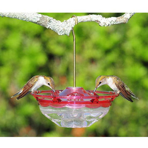 Image of Aspects Humm Blossom Hummingbird Feeder
