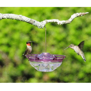*NEW* Aspects Humm Blossom Hummingbird Feeder