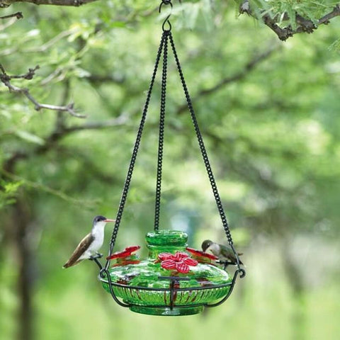 Image of Parasol Bloom Perch Hummingbird Feeder