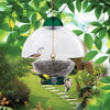 Image of Droll Yankee Big Top Bird Feeder