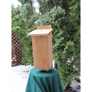 I Can Build It Bat House Kit