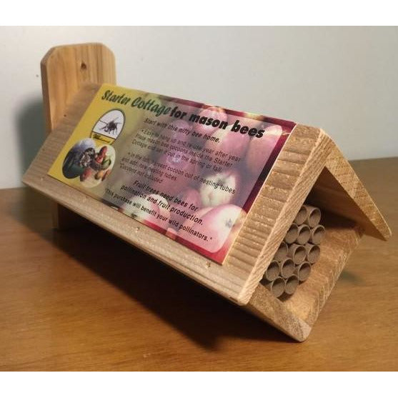 Mason Bee Starter Cottage with Straws