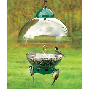 Droll Yankee Big Top Bird Feeder