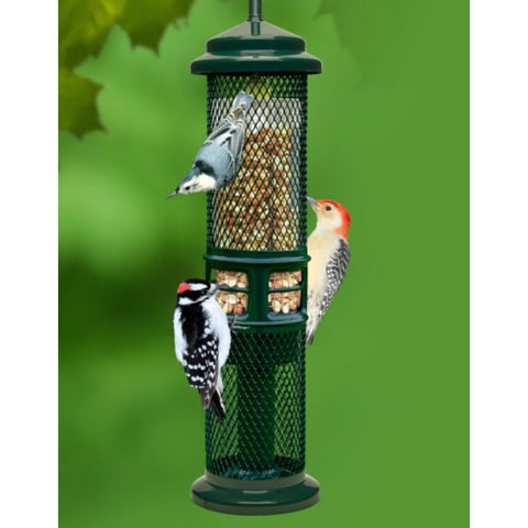 Squirrel Buster Peanut Feeder