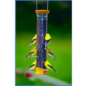 Droll Yankee Medium Thistle Bird Feeder