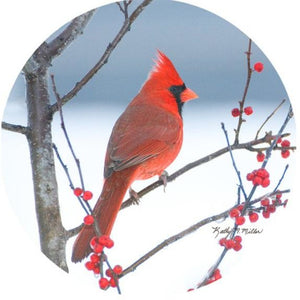 Andreas Silicone Trivet - Cardinal On Branches