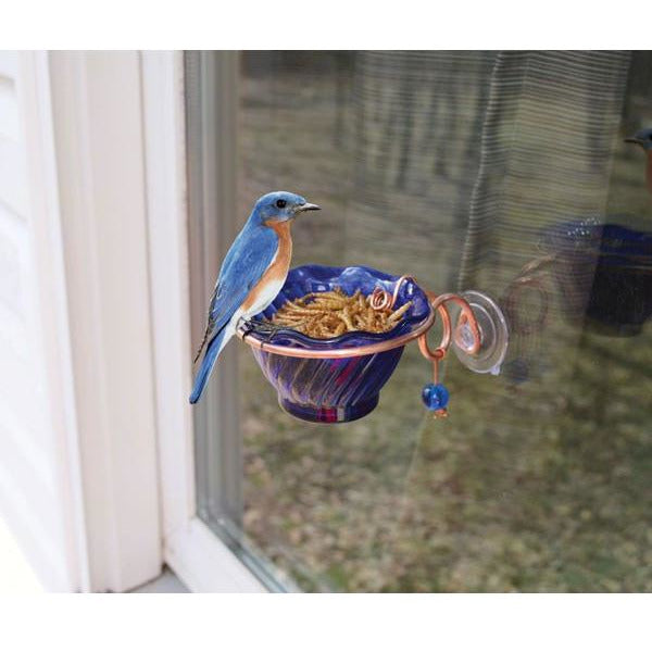 Copper Bluebird Window Mealworm Feeder
