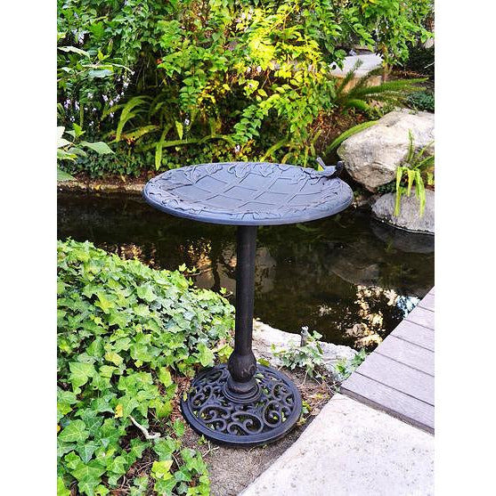 Innova English Ivy Bird Bath