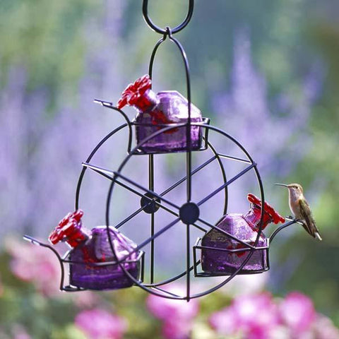 Image of Parasol Ferris Wheel Hummingbird Feeder