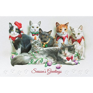 Pumpernickel Press Christmas Cards Festive Felines