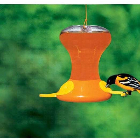Image of Songbird Essentials Flightline Junior Oriole Feeder
