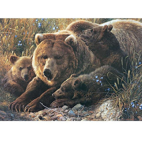 Grizzly Family-Family Pieces 350 Piece Puzzle