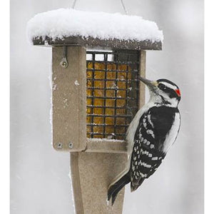 Birds Choice Medium Tail Prop Suet Feeder
