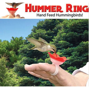 Hummer Ring Hummingbird Feeder