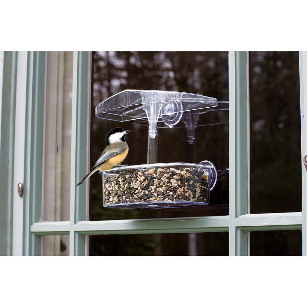 Droll Yankee Observer Window Feeder Backyard Bird Centre