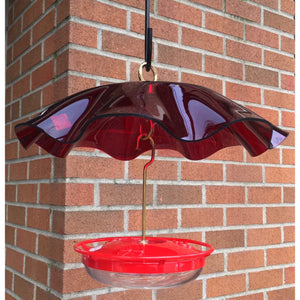 Bird Feeder Weatherguard