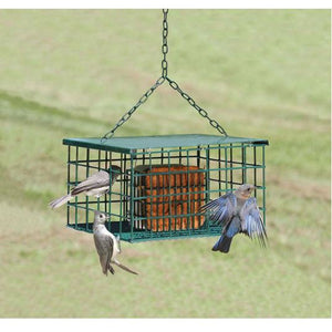 Songbird Essentials Suet Palace