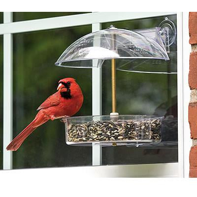 Droll Yankee Winner Window Feeder