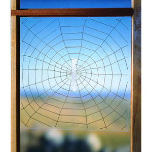 Warning Web Window Decal