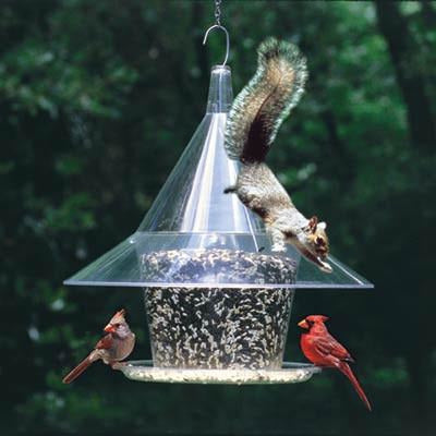 Sky Cafe Squirrel Proof Bird Feeder