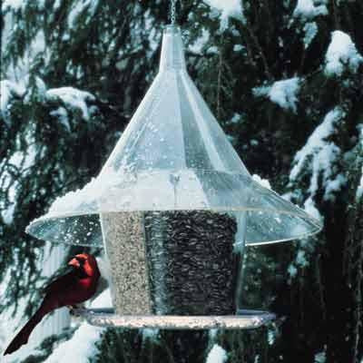 Image of Sky Cafe Squirrel Proof Bird Feeder