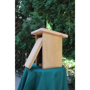 I Can Build It Nestbox Kit-Bluebird