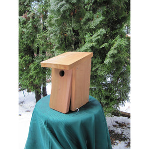 Chickadee Nest Box Kit from I Can Build It