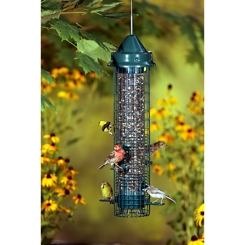 squirrel feeder best feeders bird proof cages