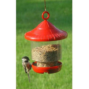 Clingers Only Bird Feeder