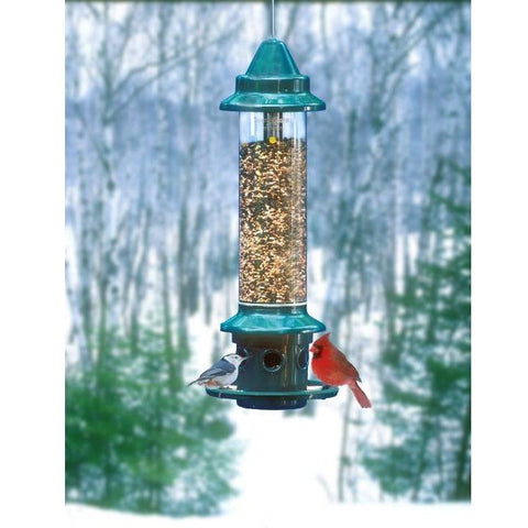 Image of Brome Squirrel Buster Plus Bird Feeder