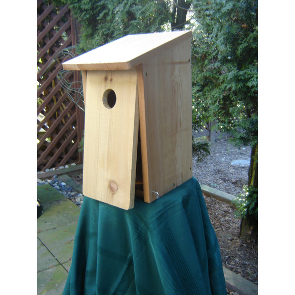 I Can Build It Nestbox Kit-Flicker
